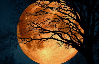 Full Moon Haunted History